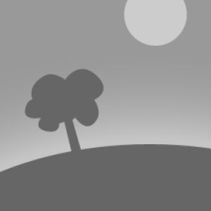 OAK HALF BARREL 2017
