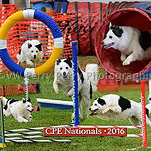 2016 CPE Nationals